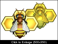 BEE N HONEYCOMB COLOR 2.jpg